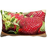standard-pillowcase-decorative-juicy-berry-red-fruit-garden-strawberry-photo-pillow-sham-16x24-inche
