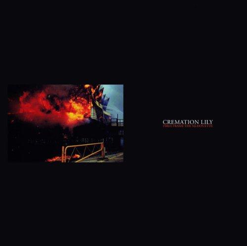 Fires Frame the Silhouette [Vinyl LP]