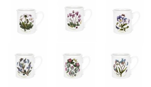 portmeirion-botanic-garden-9oz-breakfast-mug-set-of-6