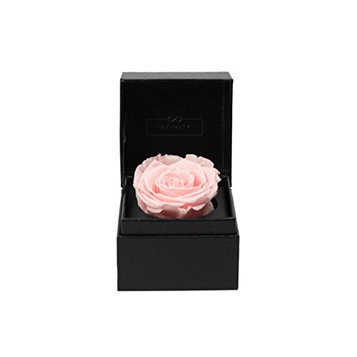Infinity Flowerbox Single - 1 echte Premiumrose in Bridal Pink