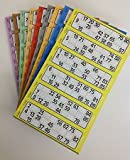 600 Bingo Tickets - Pad of Blue 6 to View Flyers