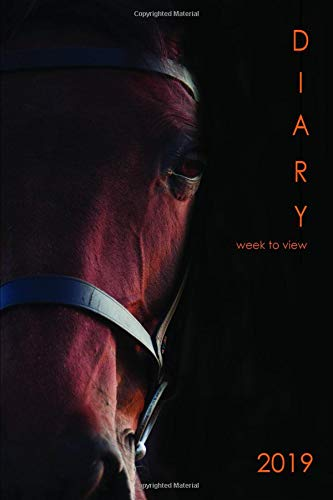 2019 Diary Week to View: For Horse Lovers