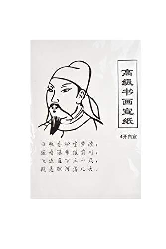Quantum Abacus Papel Raw Xuan de alta calidad, para caligrafía y pintura, cuartilla china (51cm x 37cm), 28 hojas, WP-4.01