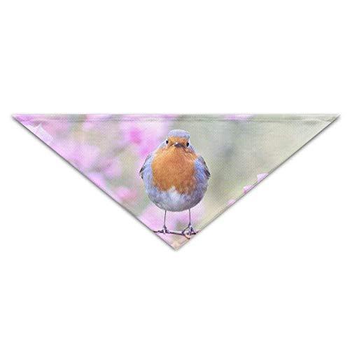 (Hectwya Vogel auf Pfirsichblüten Hund Bandana Lätzchen Welpen Katze Kopftuch Zubehör)
