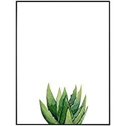 Póster de cactus