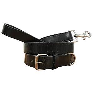BRADLEY-CROMPTON-Genuine-Leather-Matching-Pair-Dog-Collar-and-Lead-Set