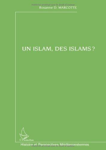 Un islam, des islams ?
