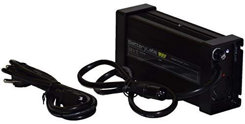 Batterylabs Chargeur Intelligent Pour Batterie Lithium Lfp Lifepoa