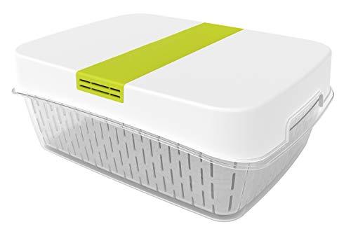 Rotho Fresh Dynamic Box Frischhaltedose groß mit Lüftung, Kunststoff (SAN+PP), weiss/grün, 6,4 Liter (31,4 x 23,9 x 12 cm)