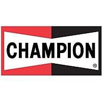 Champion E36/B01 Easyvision Spazzola Tergicristallo Standard, 38 cm