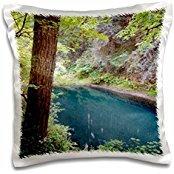 rivers-washington-state-lewis-river-cascades-range-16x16-inch-pillow-case