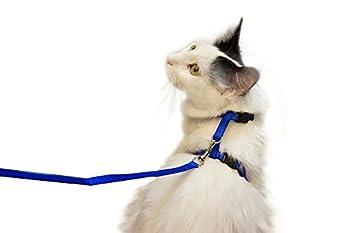 Juvale réglable en nylon Petite Kitty Harnais avec laisse de 4'? Bleu