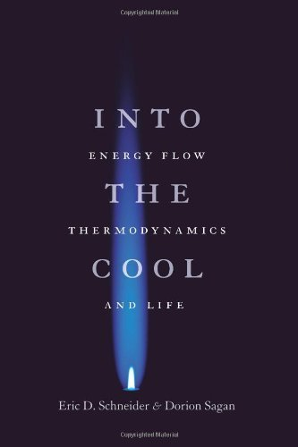 Into the Cool: Energy Flow, Thermodynamics, and Life by Schneider, Eric D., Sagan, Dorion (2005) Paperback