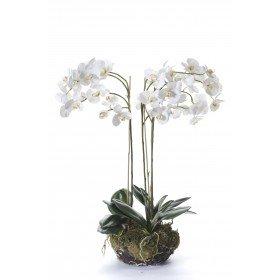 phalaenopsis-orchidee-ca-100-cm-weiss-grun-kunstlich