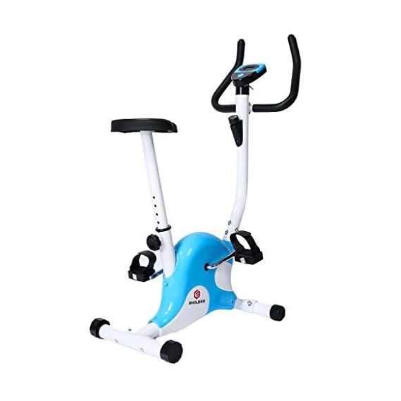 Endless Fitness Steel Exercise Bike (Blue/White)