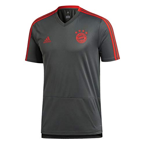 adidas Herren 18/19 FC Bayern Trainingstrikot, Utility ivy/Red, S -