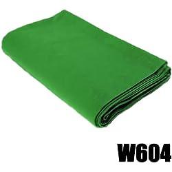 DynaSun W604 Fond Tissu en Coton pour Studio Photo/Vidéo 3 x 6 m Vert Chromakey
