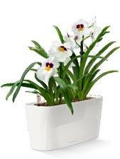 lechuza-premiuim-delta-20-40cm-wide-high-gloss-white-self-watering-houseplant-herb-windowsill-plante