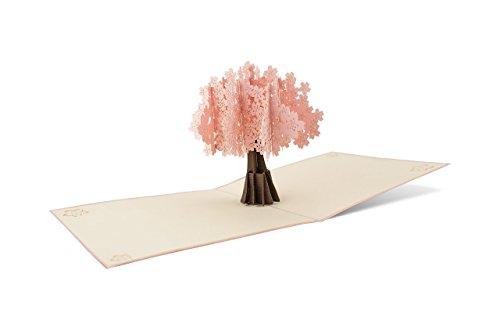 DIESE-KLAPPKARTEN® NATUR - 3D Pop-Up Karte | Verschiedene Motive | Laserschnitt | Handgefertigt | Einladungskarte | Geburtstagskarte | Taufe | Glückwunschkarte | Gutscheinkarte | Jubiläum | Grußkarte Dankeskarte | Danksagung, Diese-Klappkarten:F09 / Zierkirsche (rosa)