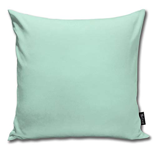 popluck Decorative Pillow Cover Mint Green Square Home Decor Pillowcase 18x18 Inches (Mint Green Room Decor)