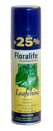 blattglanz-spray-floralife-250ml