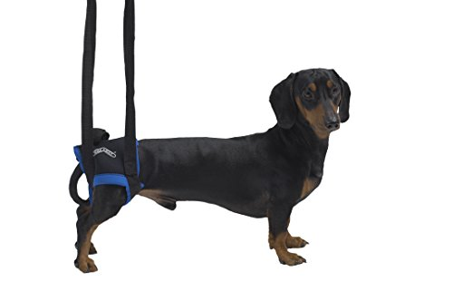 kruuse-walkabout-hind-legs-harness-small