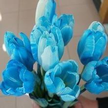 Toutes sortes de bulbes de tulipes belles fleurs de jardin sont appropriés pour les plantes en pot (il n'est pas une graine de tulipe) ampoules 2PC 8
