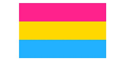 Pansexual Gay Pride Flagge 150 x 90 cm -