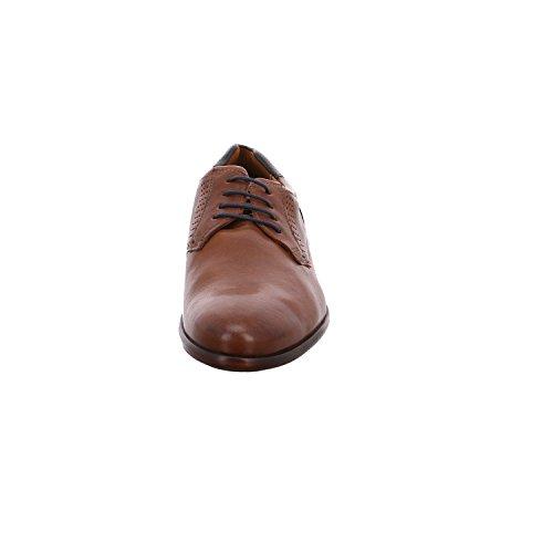 LLOYD Shoes GmbH morice 3 - CIGAR/OCEAN
