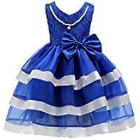 FXFAN Vestidos de Las Muchachas Niños Volantes de Encaje Vestidos de Novia ZHANGM (Color : Azul, Tamaño : 140)