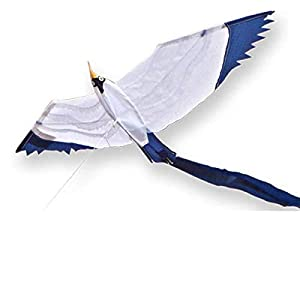 Didak Kites 21716470 - Cerf-Volante