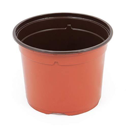 Pot horticole DUO 13 cm terre cuite (x100) (matière plastique)