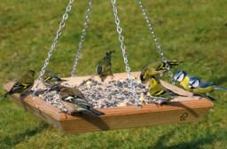 Hanging Square Bird Table