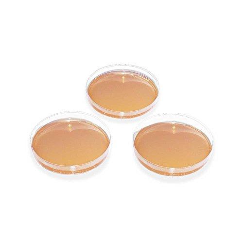20x MegroPlate Dermatophyten-Selektivagar DTM nach TAPLIN, Nährboden