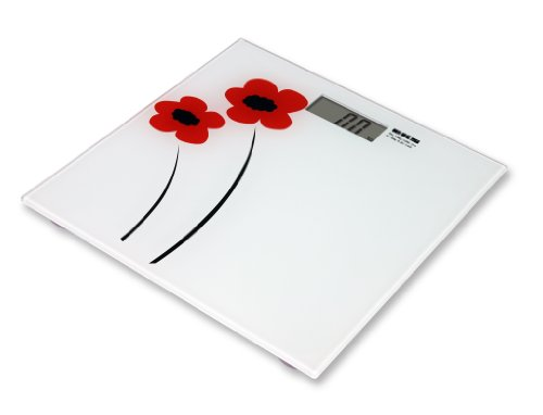 eks-9565-po-salsa-scale-with-bmi-in-silver-150-kg