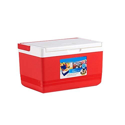 Futurepast Mini-Kühlschrank, 5L Kühlbox, Isolierbox warmhalten oder kühlen, Thermobox für Auto und Camping by