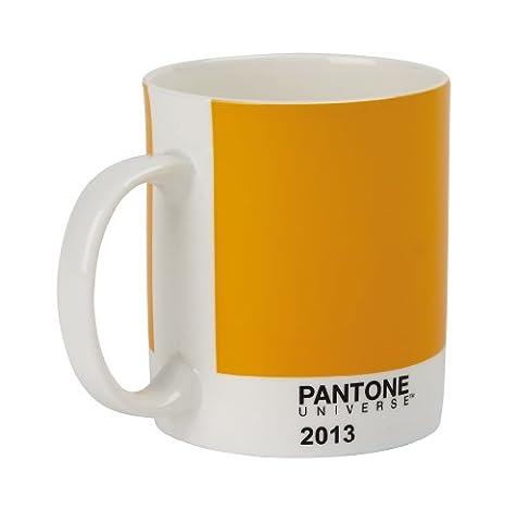 Pantone 2013 Bone China Mug,