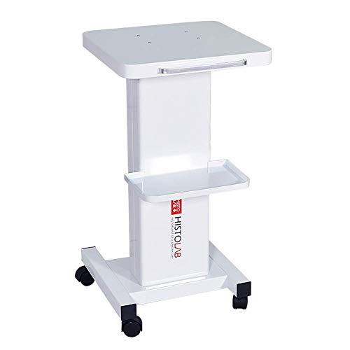 DSJMUY Allzweckwagen für medizinische Geräte Schönheitssalonwagen aus Stahl mit Griff, SPA-Werkstattwagen mit kleinem Gepäckraum, Universalbremsrad, 60 kg Zuladung