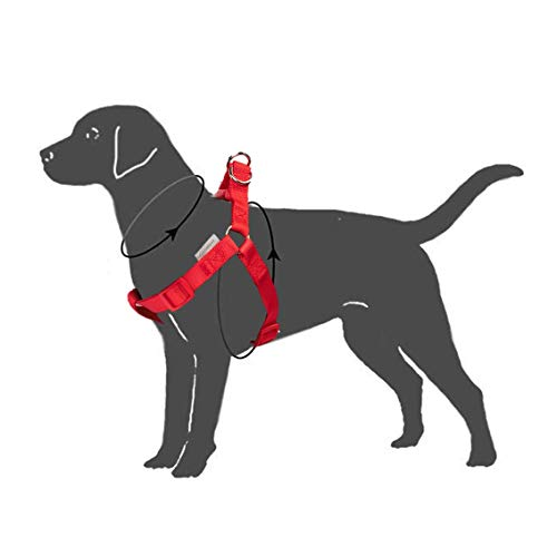 UPDOG Arnes para Perro pequeño