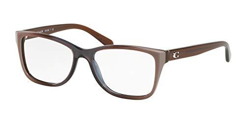 Coach EyegGlasses HC 6129 5534 TAUPE LAMINAT