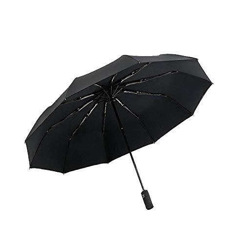 Lanker Reise Regenschirm, 10Rippen Winddicht Teflon-Beschichtung, Automatische Öffnen Starker Übergroße Regen Regenschirme ks05p Schwarz