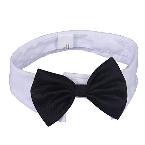 POPETPOP Hundehalsband Krawatte Baumwolle Bögen für Hund Welpen Größe (Schwarze Und Weiße Welpen Kostüm)