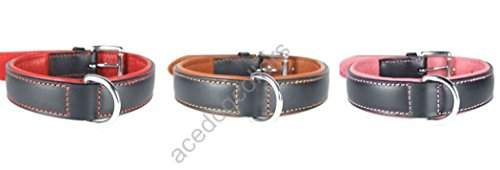 "Plain Padded LEATHER DOG COLLAR :XX Large 24"" - fits neck sizes from 18"" to 22"" (Width 1 1/4"") 2"