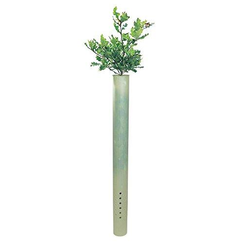 OBI Für ein gerades und gesundes Wachstum Ihrer Pflanzen