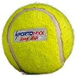 Sportonixx Long Life Light Weight Rubber Tennis Cricket Ball, Pack Of 1 Ball (Yellow)