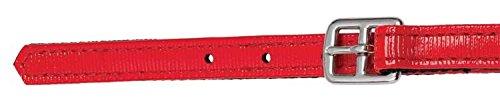 zilco 19mm Course Étrier Sangles-Standard Rouge