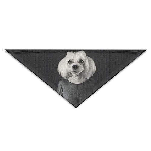 Pet Bandanas Westpommern Hund Cute Puppy Pet Dog Bandanas Schals Dreieck Lätzchen Schals Soft Basic Halstuch Katze - Custom Kiss Kostüm