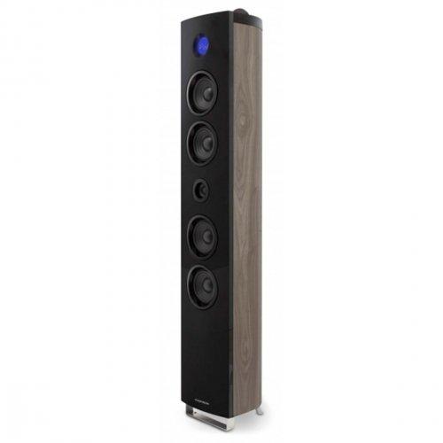 Thomson DS400 Schwarz Soundtower (Thomson Rca Stereo)