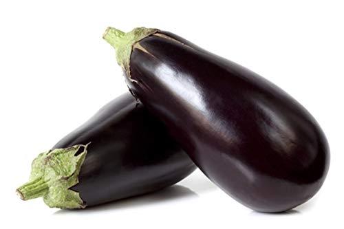 PLAT FIRM Germination Les graines: 500 graines: Aubergine Black Beauty Graines de légumes non OGM Heirloom Sow Pas GMO USA