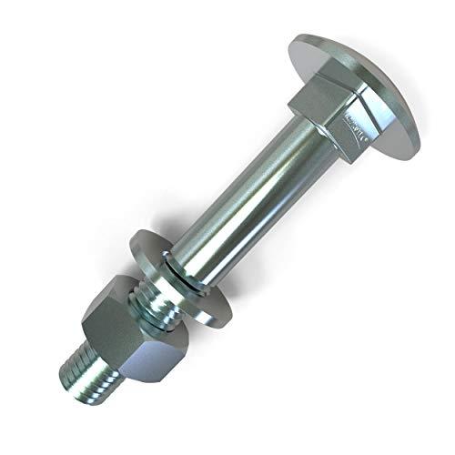 Boulons M6 tête ronde collet carré Vis TRCC avec Écrou et Rondelle Longueurs 20-120mm choix: 50 x M6x65